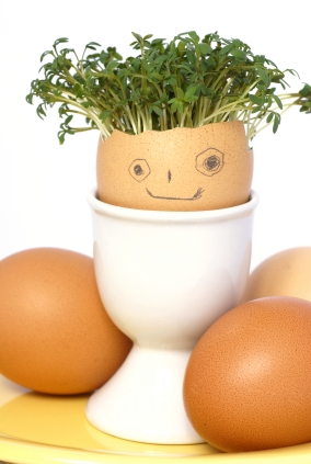 smile egg with watercress hair