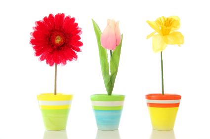flowers in decorated plant pots